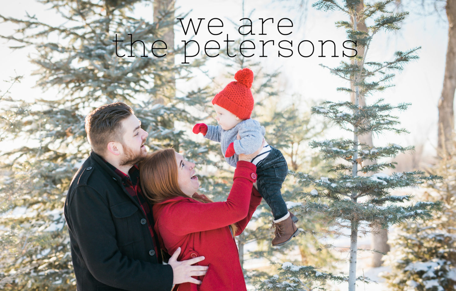 We Are The Peterson's